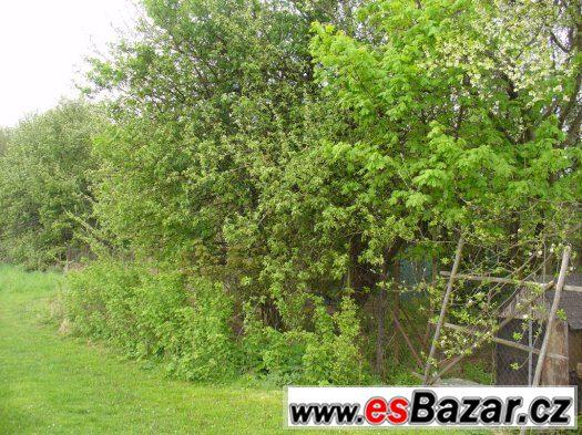 Prodej zahrady 2 276 m2, Bačkov okr. Havl.Brod