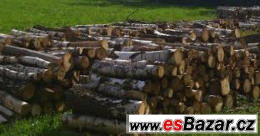 Palivové dřevo smrk 650 Kč ,  bříza  800 Kč