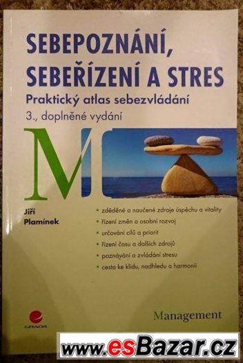 Sebepoznání, sebeřízení a stres - Plamínek Jiří