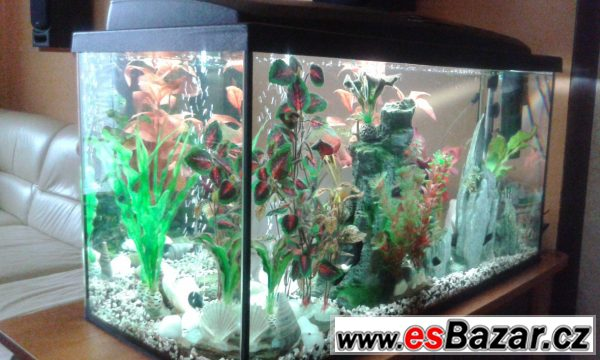 Akvárium 110 litrů