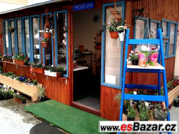 Dřevěná veranda či chatka