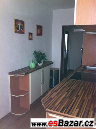 Prodej dr bytu REKONSTRUKCE 3+1+L v Hostomicích u Teplic