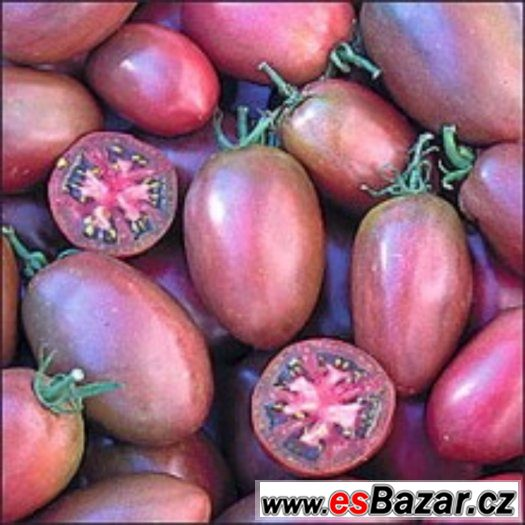 Rajče Purple Russian Plum - semena