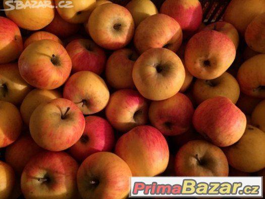 Jablka chemicky neošetřovaná