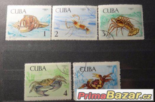 Kuba - Mořská fauna