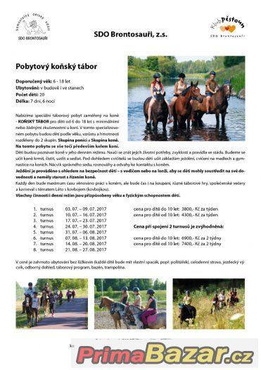 Prázdninové táborové pobyty u koní