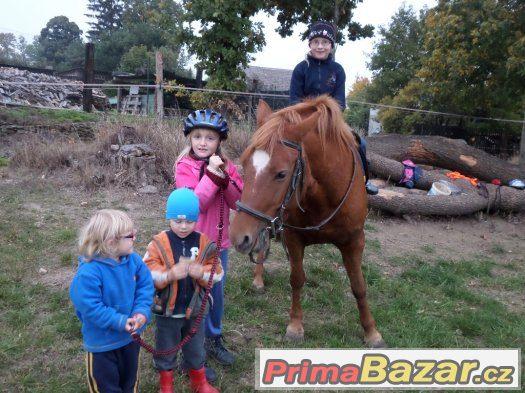Ustájení koně - Leština u Světlé