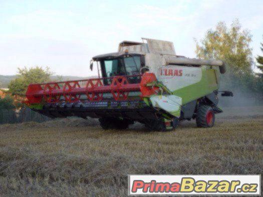 Pšenice - obilí