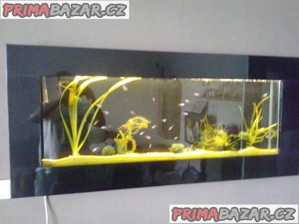 Nastěnné akvarium