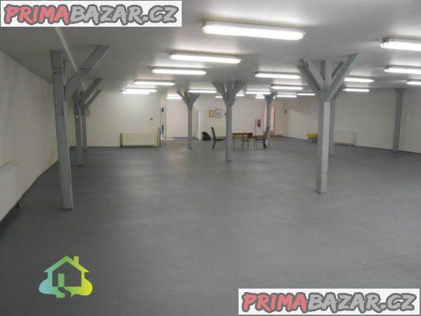 Pronájem obchodních prostor, 450 m2, Žatec