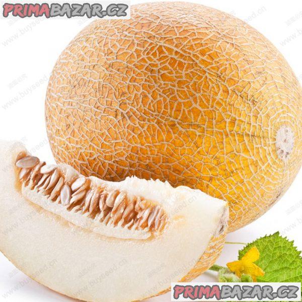 Meloun cukrový Ananas - semena