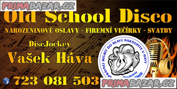 disc-jockey-vasek-hava