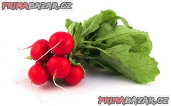 Ředkvička Saxa 2 sel. Red King - semena