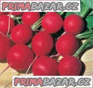 Ředkvička Rosso Gigante Sardo - semena
