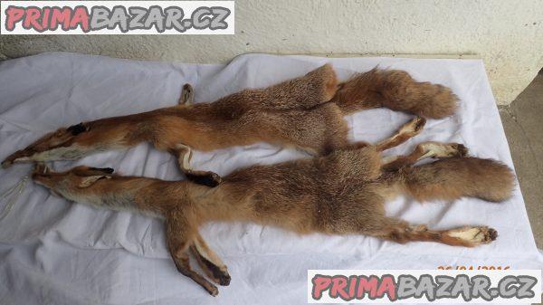 Prodám vyčiněné kožešiny z lišky a kuny