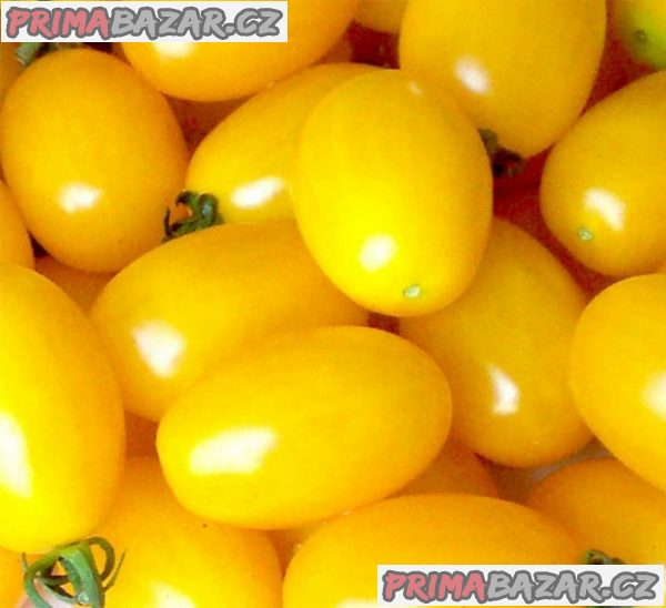 rajče Taiko - semena