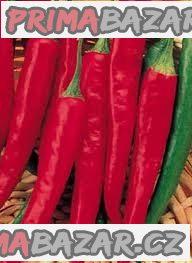 Chilli Cayenne Long Slim - semena