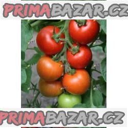 rajče Tipo - semena